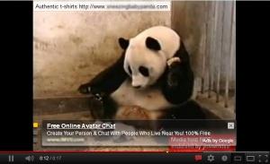 sneezing panda wtf