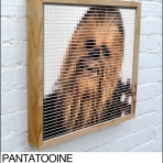 chewbacca pantone swatch art