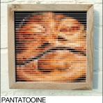 jabba pantone swatch art