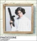 Princess Leia pantone swatch art
