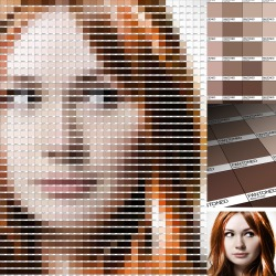 Amy Pond Pantone Art