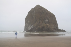 Looking at the Haystack Rock