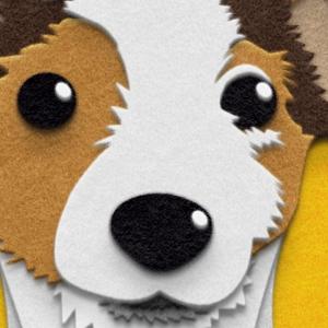 Fuzzy Dog Portrait