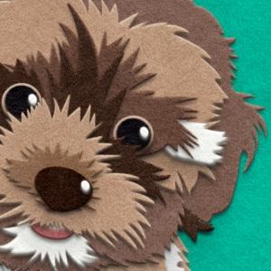 Fuzzy Paw-trait Close Up