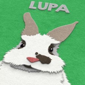 Fuzzy Bunny Paw-trait close up